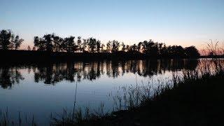 Ролики рыбалка в балаково на карася