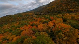 Fall in New England fpv flight