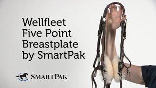 Wellfleet Five Point Breastplate by SmartPak Review