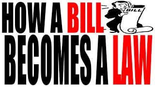 How a Bill Becomes a Law: The HipHughes Review