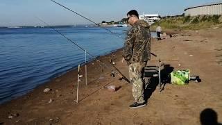 Как ловить сазана на реке амур