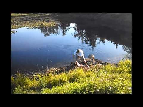 Bass Fishing in Pond in Western Maryland, Garrett County