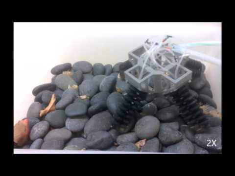 0 - Американские ученые создали мягкого робота