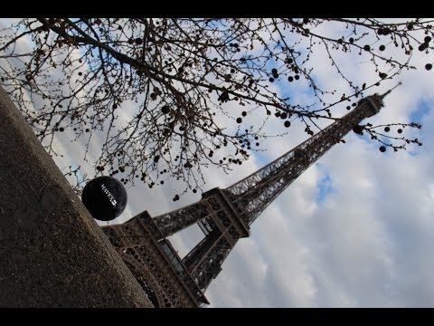 MAVEX: Congresso Internazionale Estetica - Parigi Aprile 2018