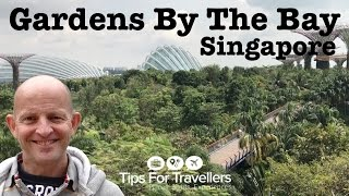 Gardens By The Bay Singapore. Exploring Breath-taking Gardens in this Tips For Travellers Tour