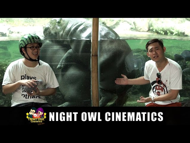 Mr Wong's Hokkien Word of the Day Ep 6: Zoo Animals