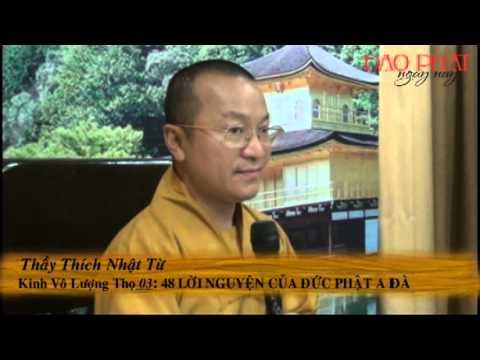 Kinh Vô Lượng Thọ 03: 48 lời nguyện của Phật A Di Đà - Phần 1 (01-24) (11/11/2012)