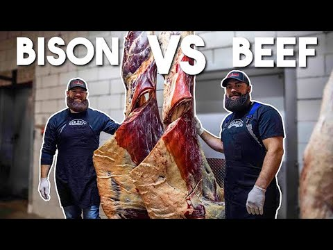 Learn The Difference Between Beef & Bison