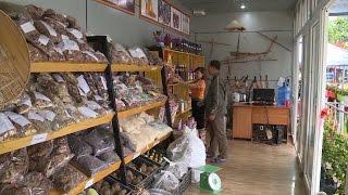 Tin Tức 24h | Nghệ An: Hàng Tết bình ổn giá đến với vùng cao