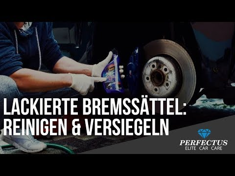 Bremssattel pflegen - Bremsanlage reinigen und versiegeln