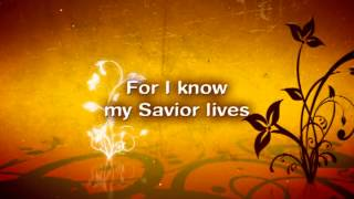 Chris Tomlin - How Can I Keep From Singing with Lyrics