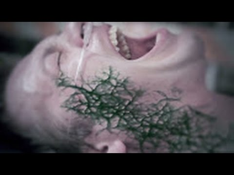 Caustic Method - The Virus - Official Music Video HD