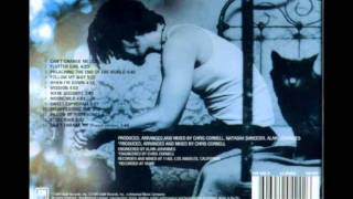 Chris Cornell - Can't Change Me (Euphoria Morning)