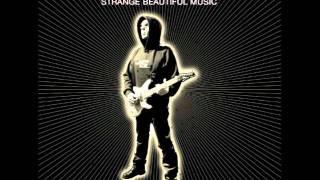 The Eight Steps- Joe Satriani