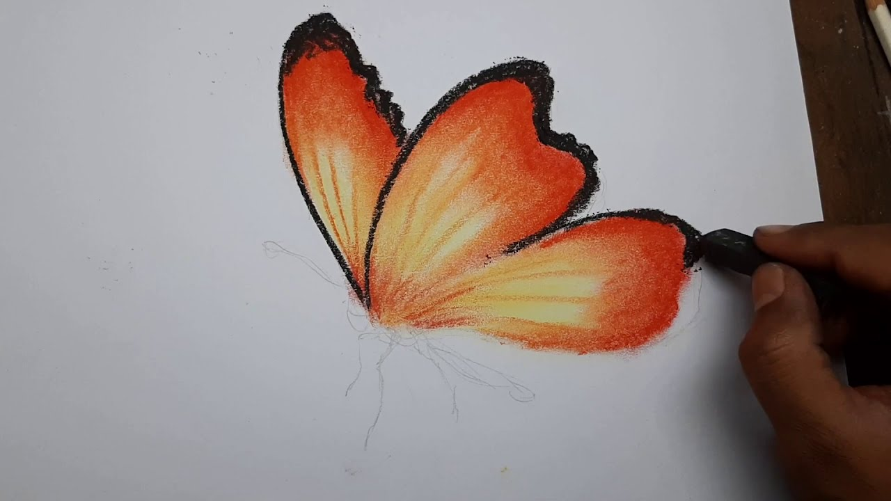 3d drawing of a butterfly 3d art 4 you