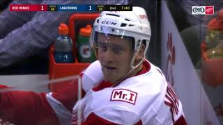 Detroit Red Wings Hits and Fights (2017-2018)