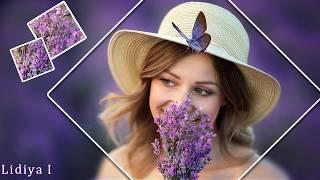 Лавандовое лето# Lavender summer# Free project Proshow Producer