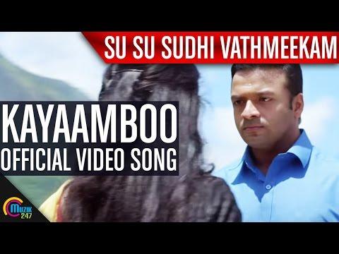 Kayaamboo Su Su Sudhi Vathmeekam Song Video - Jayasurya