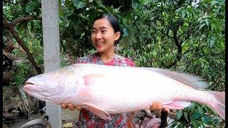 Cá Sủ hiếm hoi nấu lẩu Măng Chua - Hương vị đồng quê - Bến Tre - Miền Tây