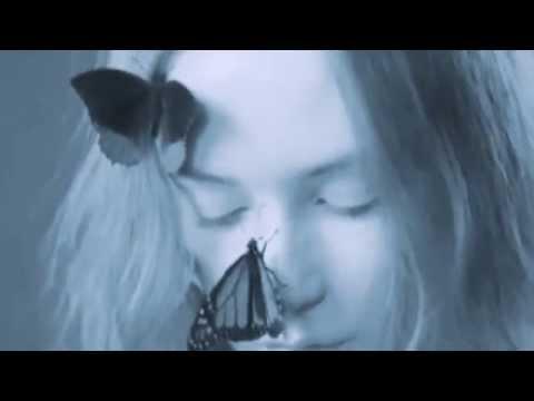 Butterfly, Butterfly (Steve Osborne Version) Lyrics – A-ha