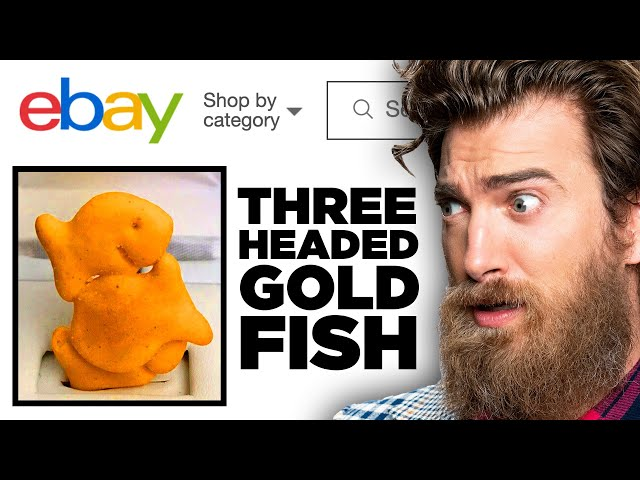 Weirdest eBay Items (GAME)