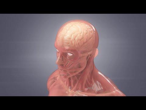 Gyógyszer ízületi gyulladásokra