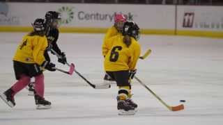 Girls Hockey Weekend At The Colorado College Vs. UAH Game 2014
