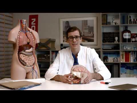 Hypertension 3 Grad differentialdiagnostisch