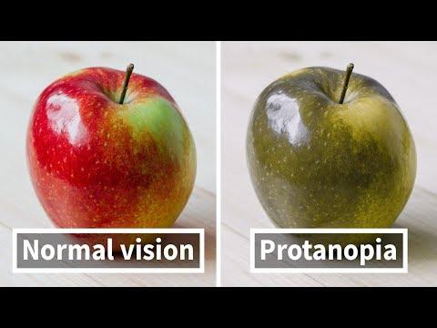Látás fizikai folyamat
