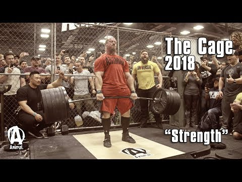 """The Cage 2018 