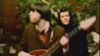 Pushin Too Hard -The Seeds (1967)