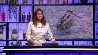 De Virals Van Woensdag 11 Januari 2017  RTL LATE NIGHT