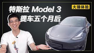 【大锤体验】特斯拉 Model 3 提车五个月后