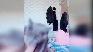 Смешные коты и кошки(Приколы)😂😂😂.