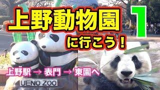 上野動物園上野駅→表門→東園へパート1上野動物園に行こう!