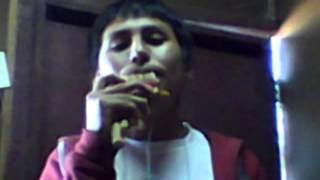 El Sicuri - Savia andina