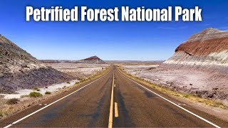 A Trip To Petrified Forest National Park