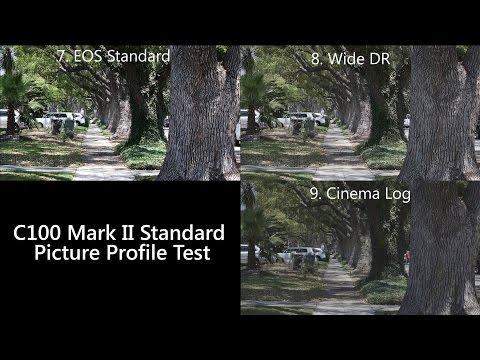 Canon C100 Mark II - Standard Picture Profile Tests