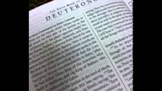 Deuteronomy 17 - New International Version (NIV) Dramatized Audio Bible