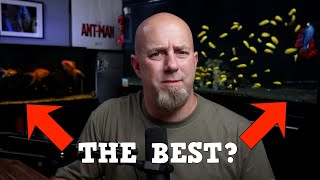 Are These The Best For Your Aquarium? Pros And Cons Of All Substrates