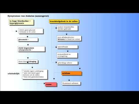 Steuerung von Typ-2-Diabetes