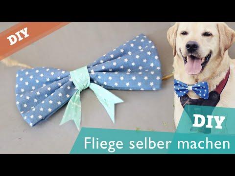 Fliege / Schleife ohne Nähen | Hunde DIY | selber machen | Hundekanal