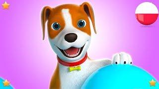 bingo psa   Polskie Piosenki Dla Dzieci   Kołysanki   Filmy Dla Dzieci   Bingo The Dog  