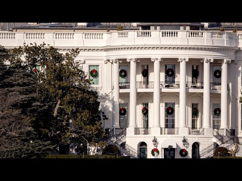 The iconic White House magnolia tree, a history