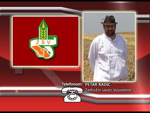 FONO: Petar Radić - Setva u Vojvodini
