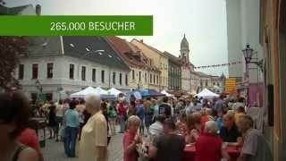 preview picture of video 'Tag der Sachsen 2014 in Großenhain - Impressionen'