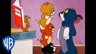 Tom & Jerry in italiano | A Casa Ma Non Soli | WB Kids