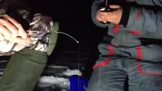 Зимния рыбалка на окуня ночью