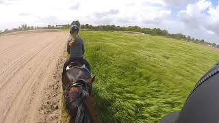 Outdoor horse ride in Belgiums country side!! GoPro FPV