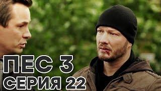 Сериал ПЕС - все серии - 3 сезон - 22 серия - смотреть онлайн